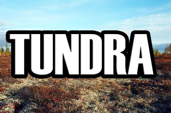 тундра 0.9 15